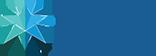 Smart Brain Solutions Logo
